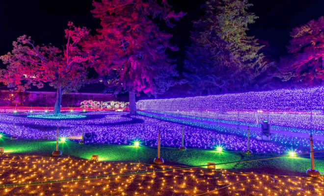 odawara-chochin-kodomo-leisure-park