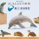 shinenoshima-aquarium-hashimotomio-capsuletoy