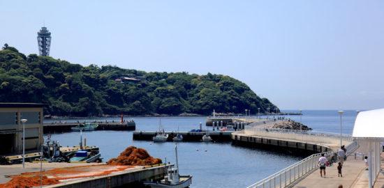 enoshima-katase-fishing-market-resume