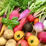 yokosuka-suzunari-farm-rainbow-vegitable